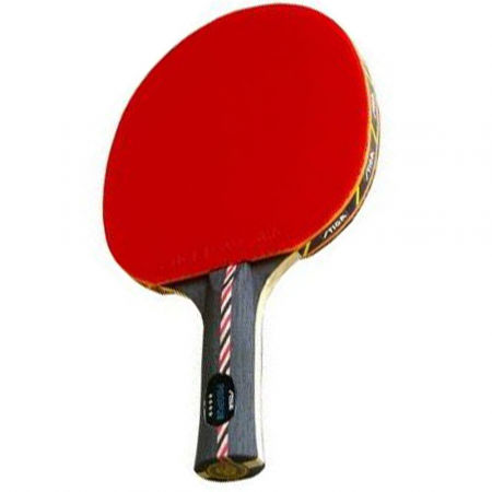 Pálka na stolní tenis - Stiga PROPUS