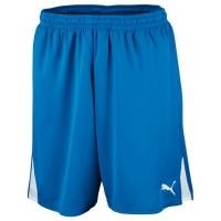 Puma Shorts Team JR