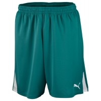 Puma SHORTS TEAM W IS JR