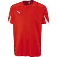 Puma Shirt Team