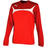 Puma ESITO 3 TRAINING SWEAT