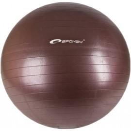Spokey FITBALL S PUMPIČKOU 65CM - Gymnastický míč