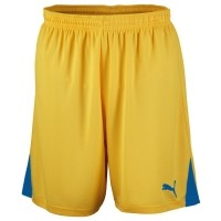 Puma Shorts TEAM W JR