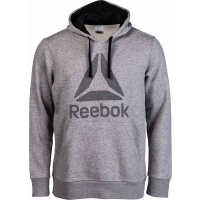Reebok WORKOUT READY BIG LOGO HOOD
