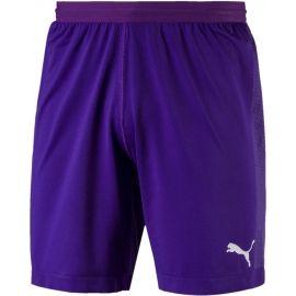 Puma FINAL evoKNIT GK Shorts